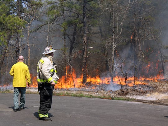 The State Forest Fire Service has begun scheduling prescribed burns in order to reduce undergrowth and other forest floor materials that have the potential to fuel wildfires.