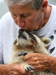Dot Lee give Trouper a kiss on the nose as she tells his story on how she rescued him. Trouper the Blind Raccoon and Animal Ambassador, along with his caregiver Dorothy ÒDotÓ Lee will appear in an episode of ÒUnlikely Animal FriendsÓ on Saturday, May 21 at 8/7c PM on Nat Geo WILD, where their unusual relationship will be highlighted. ÒUnlikely Animal FriendsÓ will feature footage that captures TrouperÕs role in providing educational presentations to children, as well as scenes of his daily life with Lee. Lee showed some of her daily life with Trouper. Everything from how she hand feeds him, files, his nails, helps to exercise him and gives him pool time, to just sitting and relaxing. She spends most of her day caring for Trouper who is blind and brain damaged. Trouper is now an animal ambassador and his story is used to teach children about respecting wild animals and what to do when you find one injured.