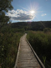 The Swamp River Boardwalk on the Appalachian Trail