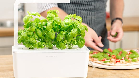 4 ways tech can help you grow the garden of your dreams this summer