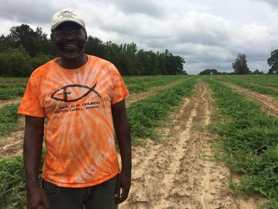 Ozell White is a fifth-generation farmer who grows watermelons and raises cattle.