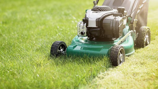 Mow long grass, or the City of Manitowoc will, with fines.