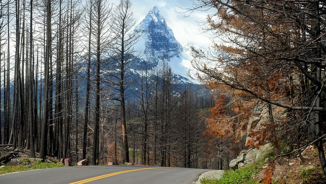 The Reynold's Creek Fire in Glacier National Park opened up majestic views along Going-to-the-Sun Road.
