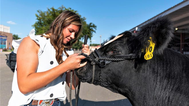 """Ema Richardson of Yuma says """"goodbye"""" to her steer  Doris during Tuesday's Junior Livestock Sale at the Southwest Motors Events Center. Doris, the grand champion market beef sold, for $50,000."""