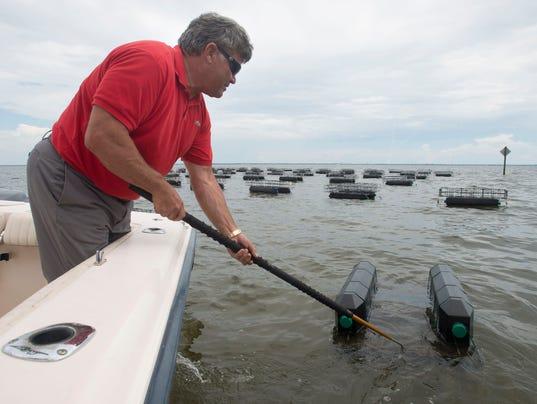 Pensacola Bay Oyster Company
