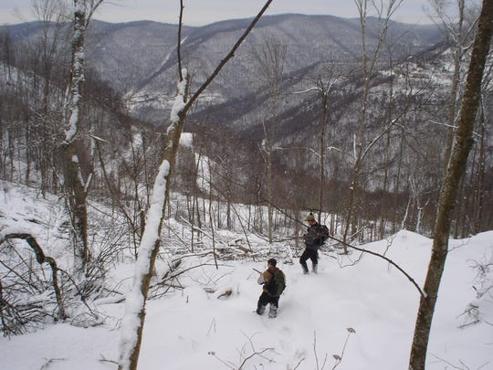 Since 2005 researchers in Kentucky have used tracking devices to locate bears in their dens. Here, Kentucky Fish and Wildlife officials search a remote mountain range in eastern Kentucky.