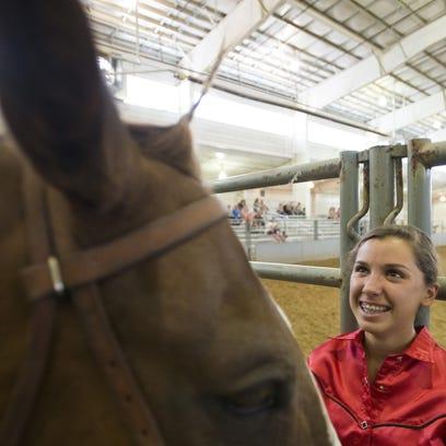 FTC0727-HORSES