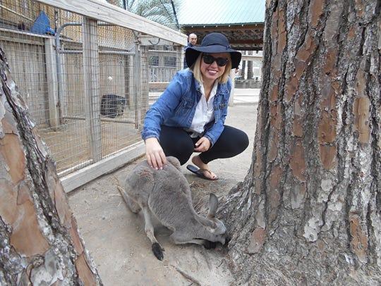 Kangaroo at The Gulf Shores Zoo.