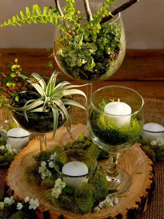 At home go live with plant arrangements for Garden arrangement of plants