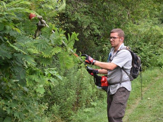 James Burris of Black Dog Bikes in Staunton trims tree