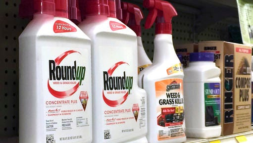 Containers of Roundup, left, a weed killer is seen on a shelf with other products for sale at a hardware store in Los Angeles on Thursday, Jan. 26, 2017. A battle over the main ingredient in Roundup, the popular weed killer sprayed by farmers and home gardeners worldwide, is coming to a head in California, where officials want to be the first to label the chemical, glyphosate, with warnings that it could cause cancer. Chemical giant Monsanto has sued the nation's leading agricultural producer, saying state officials illegally based their decision for warning labels on an international health organization.