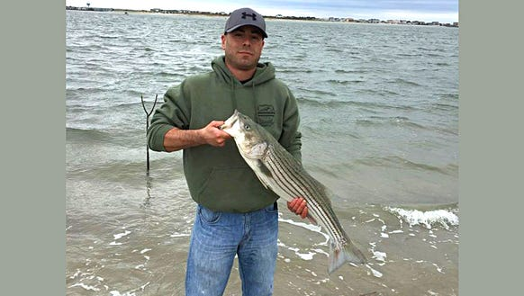 Fishing bluefish are biting big time in bay for Brigantine fishing report