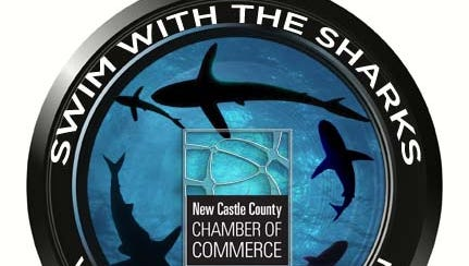 Voting for the first round of the Swim with the Sharks video pitch contest ends Friday.