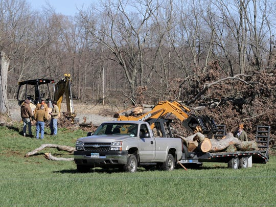 On Saturday morning, work crews took down what was left of the Shawshank tree near Malabar Farm State Park