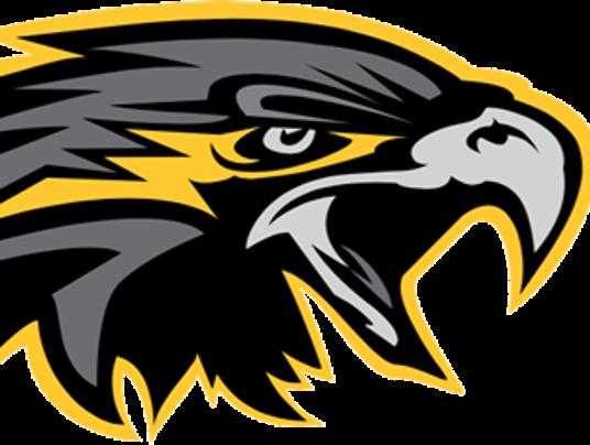Nighthawks logo.png