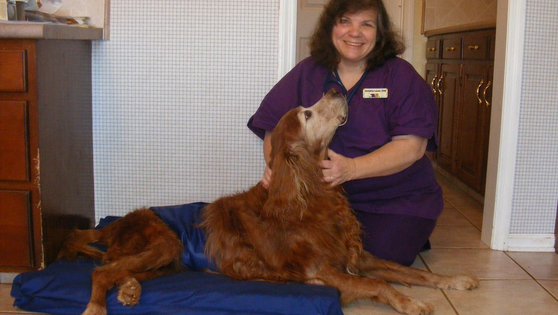 Hunterdon mobile veterinarian makes house calls