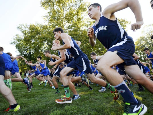 Runners from five YAIAA schools take off after the starting gun is fired during the cross country meet at Reservoir Park in Spring Garden Township on Tuesday. Dallastown finished the meet with a 4-0 record.