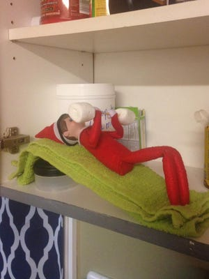Here's our elf Chippy pumping some iron.