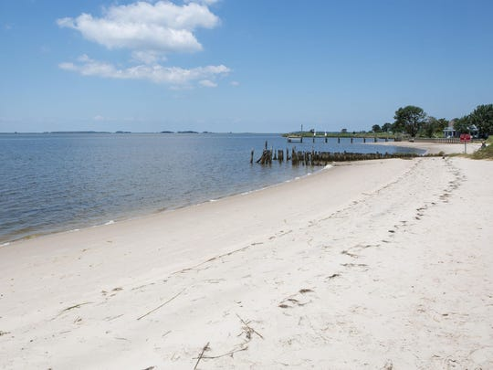 Cove Road Beach on the Nanticoke closes often because of bacteria levels for a variety of environmental reasons.