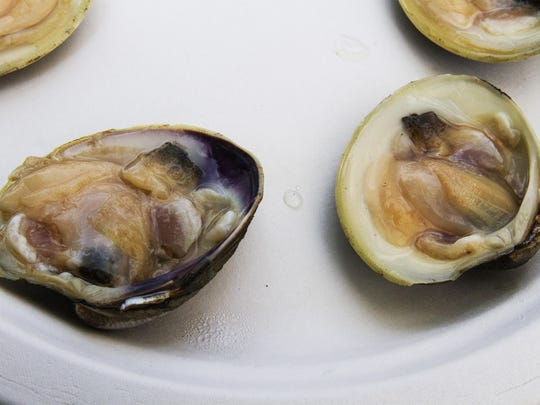 The annual Clam Festival will take place Aug. 1 to 4 at Huddy Park in Highlands.