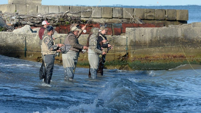 Anglers fish for steelhead in Lake Erie at Avonia Beach Park on Sept. 18, 2020, in Fairview Township. . Steelhead are staging now in Lake Erie waiting for a big rain to trigger a run into the tributaries.