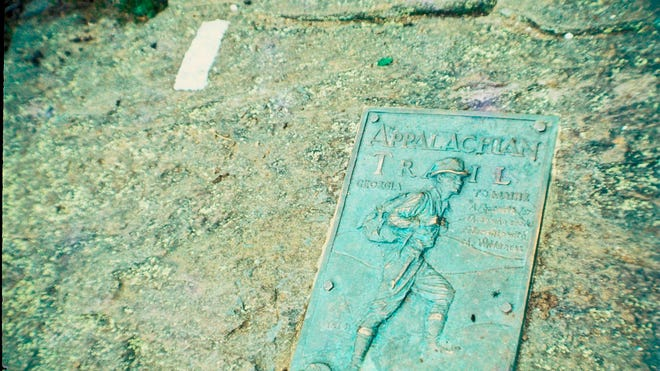 The iconic plaque and the first Appalachian Trail blaze on the summit of Springer Mountain, Georgia.