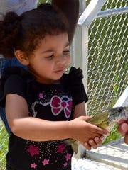 April Winn, 3, handles the second fish she caught during