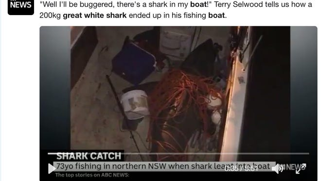 An Australian fisherman was injured over the weekend after a giant great white shark launched itself into his boat.