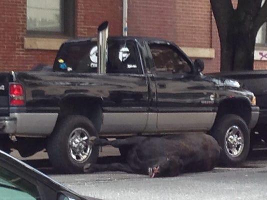 ODD - Baltimore Polic_Bene.jpg