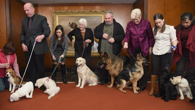 The American Kennel Club in New York in 2015.