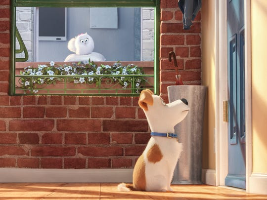 "Gidget watches Max at the door in ""The Secret Life"