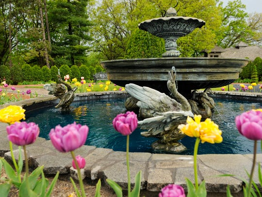 Friday and Saturday are the two days you have to enter he Munsinger Clemens Botanical Society's 2018 Photo Contest.