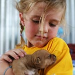 Birthday girl with 'soft heart for puppies' collects donations for Humane Society