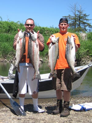 Grant Webster (left) and Jeff Hart, both of Albany, hold up a pair of Chinook salmon each that they caught on the Trask River. They were using divers, bobbers and back-bouncing salmon eggs.