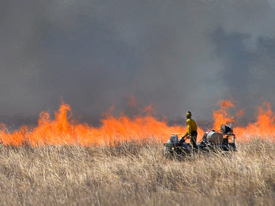 Flames leap into the air as a Minnesota Native Landscapes worker keeps watch from a four-wheeler Wednesday, May 4, during a planned prairie burn near Kennedy Community School.