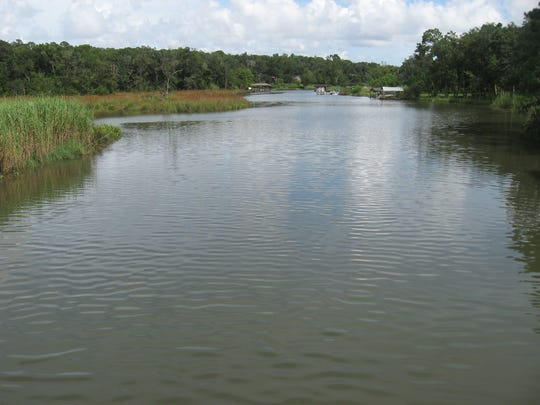 A health alert has been issued for parts of Bayou Texar, Bayou Chico and Bayou Grande.