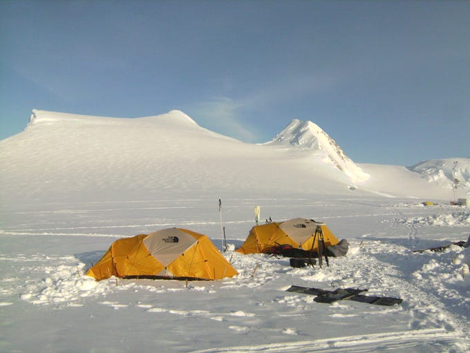Scientists spent a month in Denali National Park in
