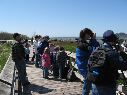 The Sandpiper Trail at Grays Harbor National Wildlife