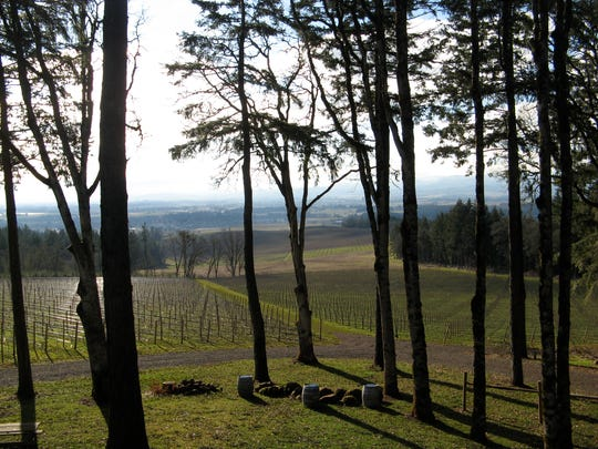 View from the Treehouse Tasting Room at Vista Hills Vineyard