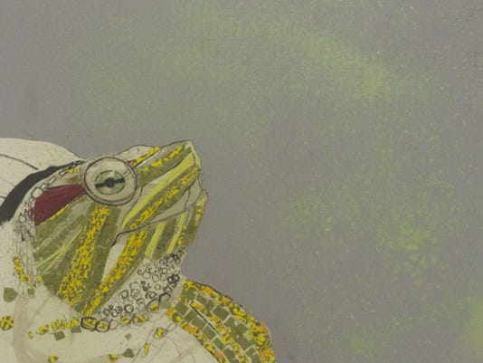 Red Earred Slider