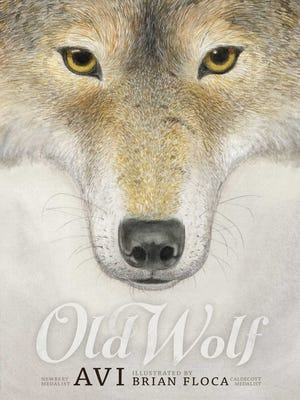 """""""Old Wolf"""""""