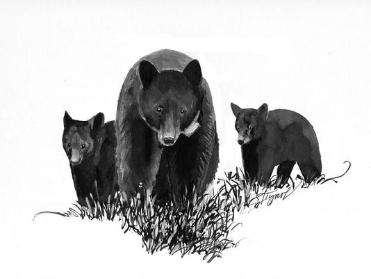 TOS_Bear_and_Cubs