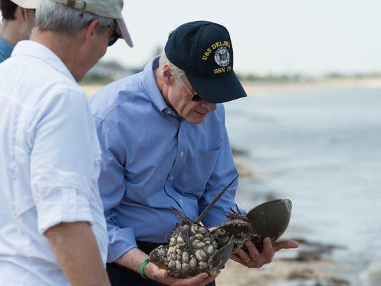 United States Senator Tom Carper carries two horseshoe