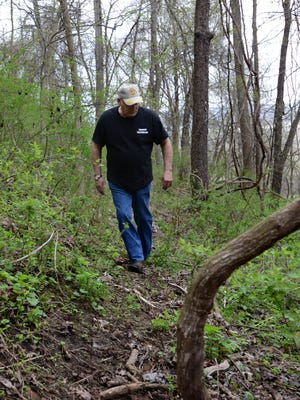 Dave Snoke hunts for mushrooms in a friend's forest Friday in Berne Township.