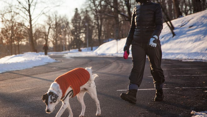 Sarah Enloe walks her dog Alle around the loop at Gypsy Hill Park, both bundled up against frigid single-digit temperatures, in February of 2015.