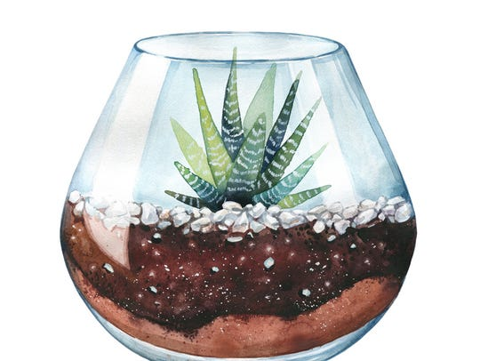 A terrarium-building workshop will be held at Somerset