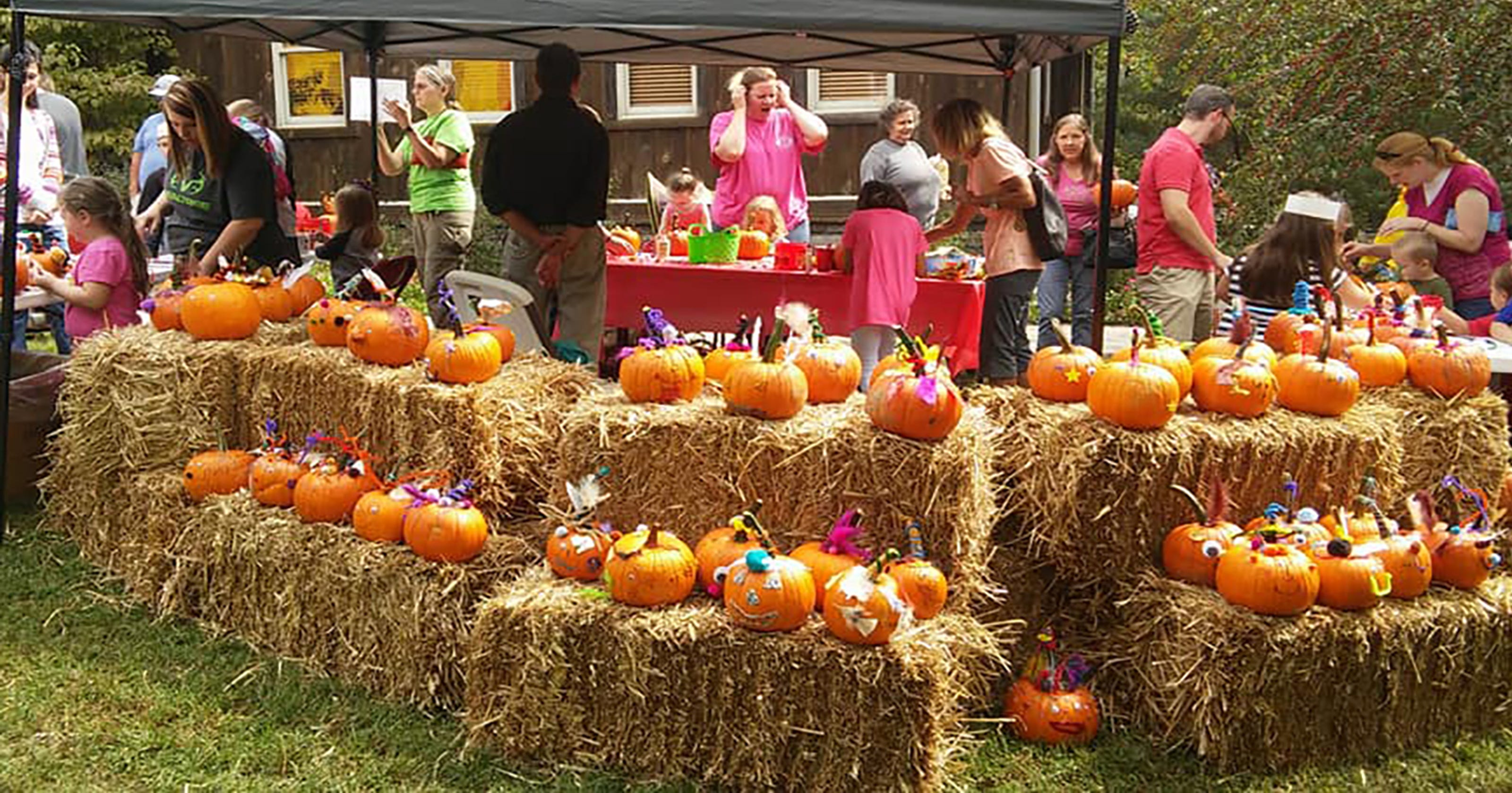 fall festivals family fun around middle tennessee this october november. Black Bedroom Furniture Sets. Home Design Ideas
