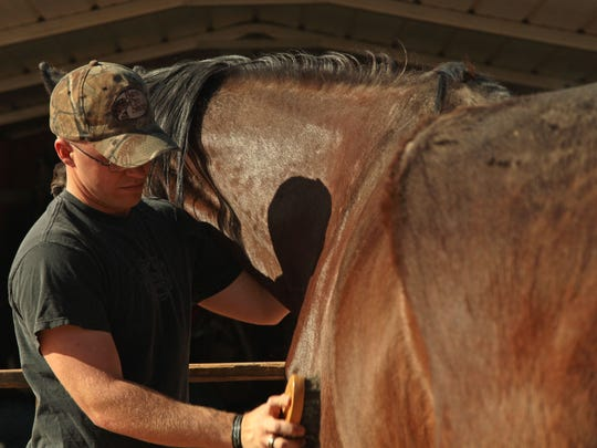 Marine Cpl. Zach Atkinson, a PTSD patient, grooms a horse on April 30, 2013 while participating in the Warrior Athlete Reconditioning Program at the J.A.M.E.S. Ranch in Twentynine Palms. Atkinson said equine therapy has been an effective tool for treating his disorder.