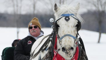 Sleigh rides teach about history at Goodells County Park