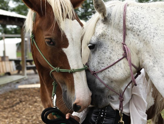 Buster and Beauty hang out at The Old West Festival,